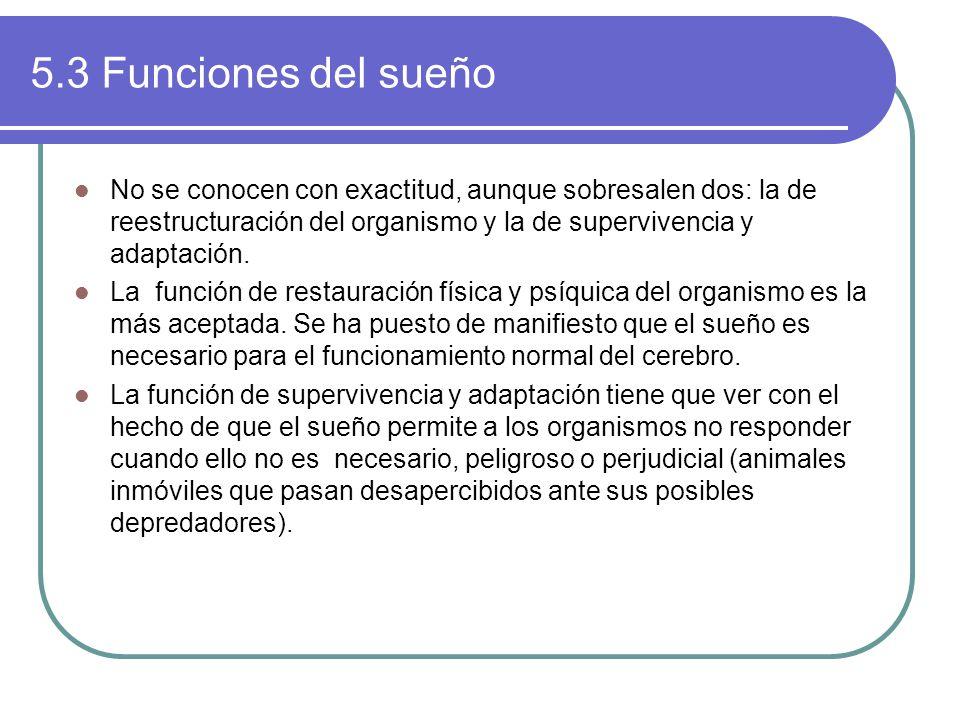 5.3 Funciones del sueño No se conocen con exactitud, aunque sobresalen dos: la de reestructuración del organismo y la de supervivencia y adaptación.