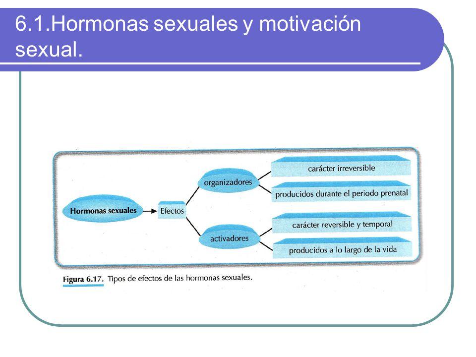 6.1.Hormonas sexuales y motivación sexual.