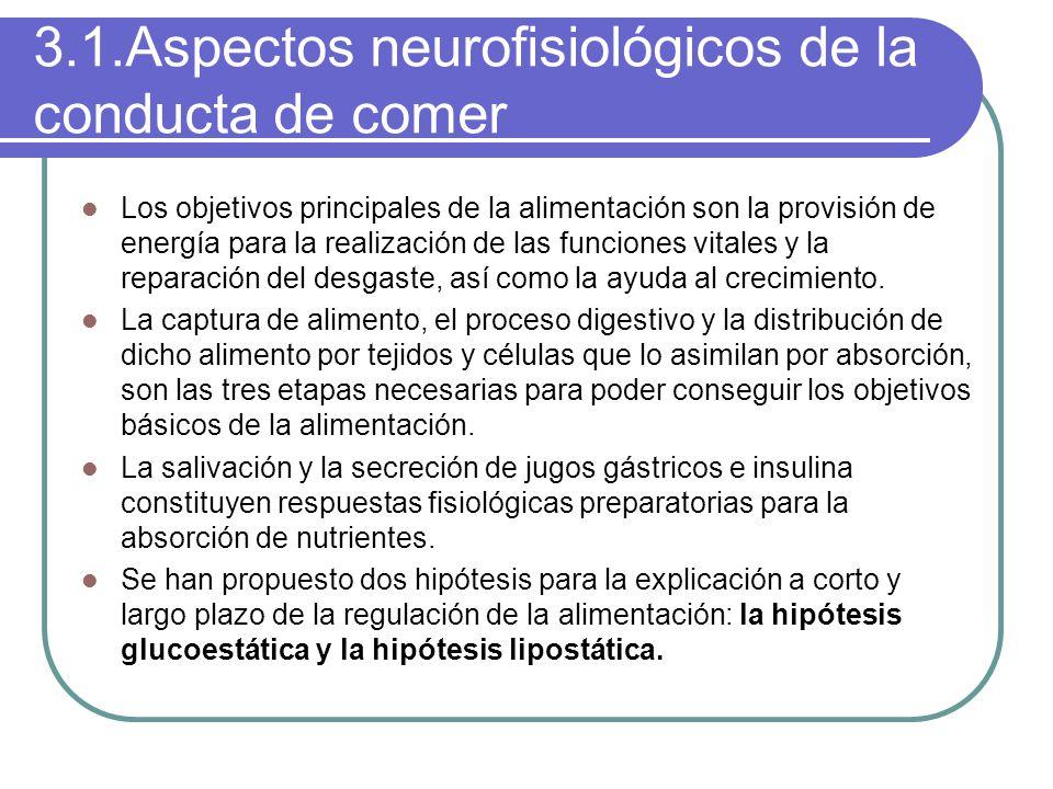 3.1.Aspectos neurofisiológicos de la conducta de comer