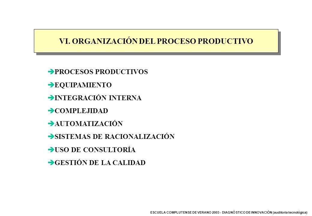VI. ORGANIZACIÓN DEL PROCESO PRODUCTIVO