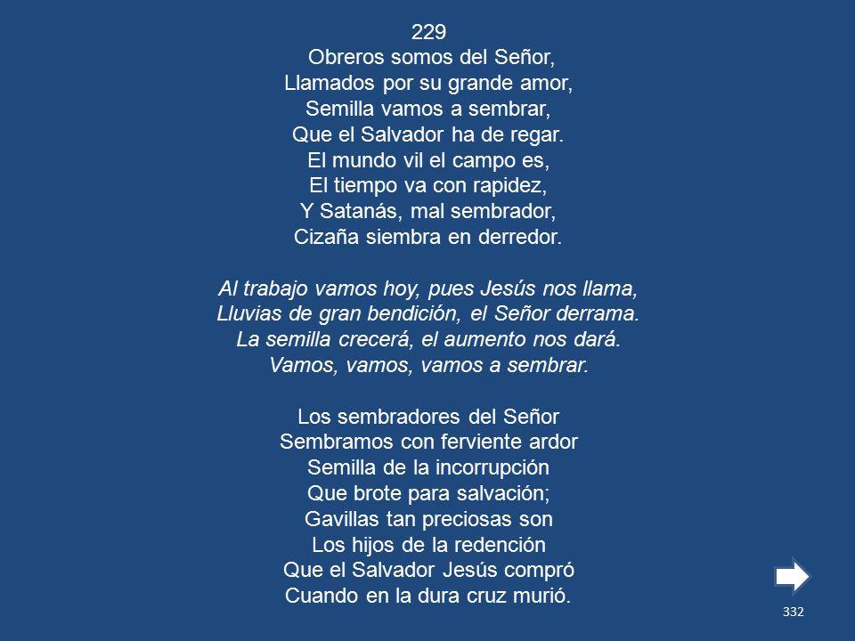 229 Obreros somos del Señor, Llamados por su grande amor, Semilla vamos a sembrar, Que el Salvador ha de regar.