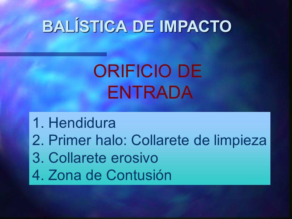 ORIFICIO DE ENTRADA BALÍSTICA DE IMPACTO 1. Hendidura