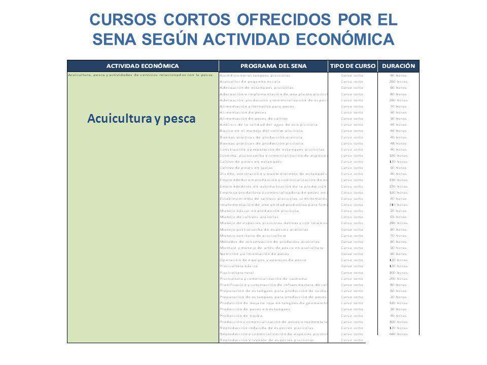 CURSOS CORTOS OFRECIDOS POR EL SENA SEGÚN ACTIVIDAD ECONÓMICA