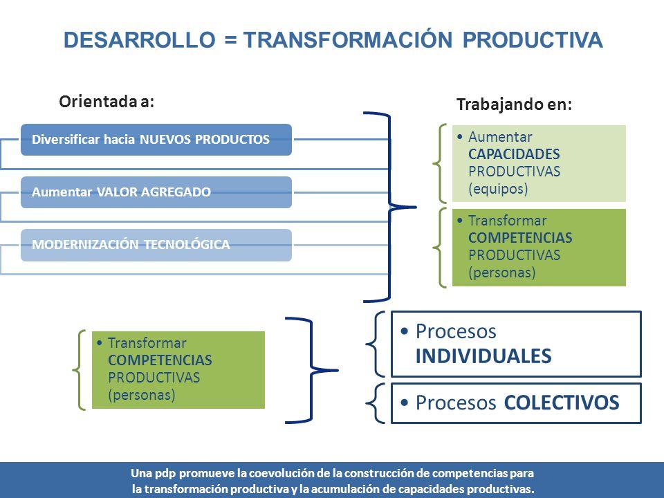 DESARROLLO = TRANSFORMACIÓN PRODUCTIVA