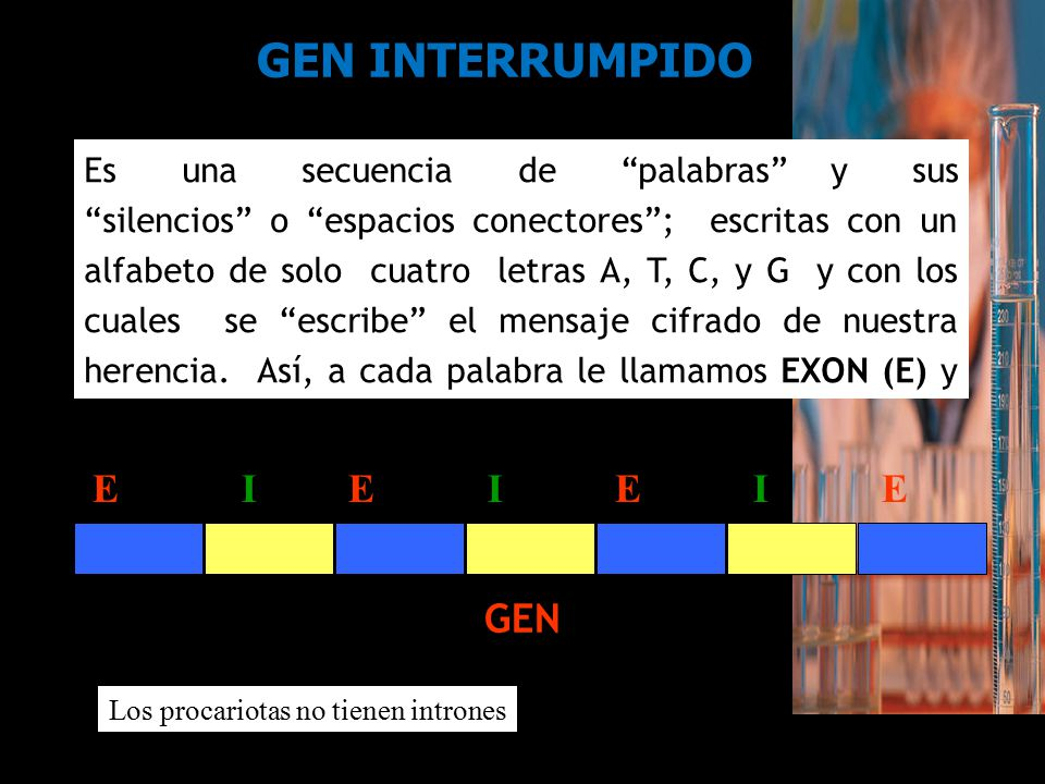 GEN INTERRUMPIDO E I E I E I E GEN