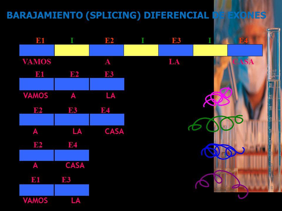 BARAJAMIENTO (SPLICING) DIFERENCIAL DE EXONES