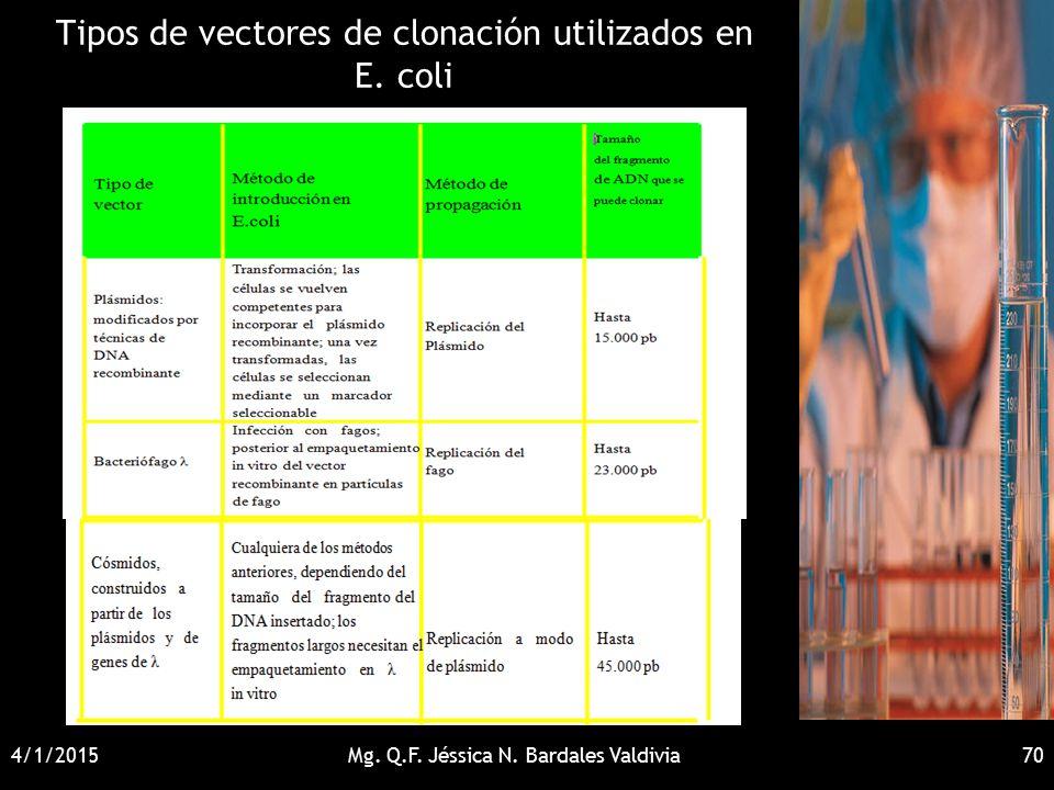 Tipos de vectores de clonación utilizados en E. coli