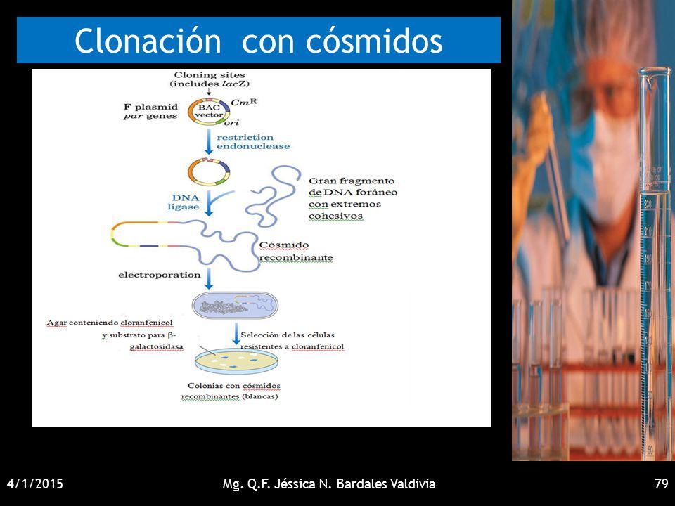 Clonación con cósmidos