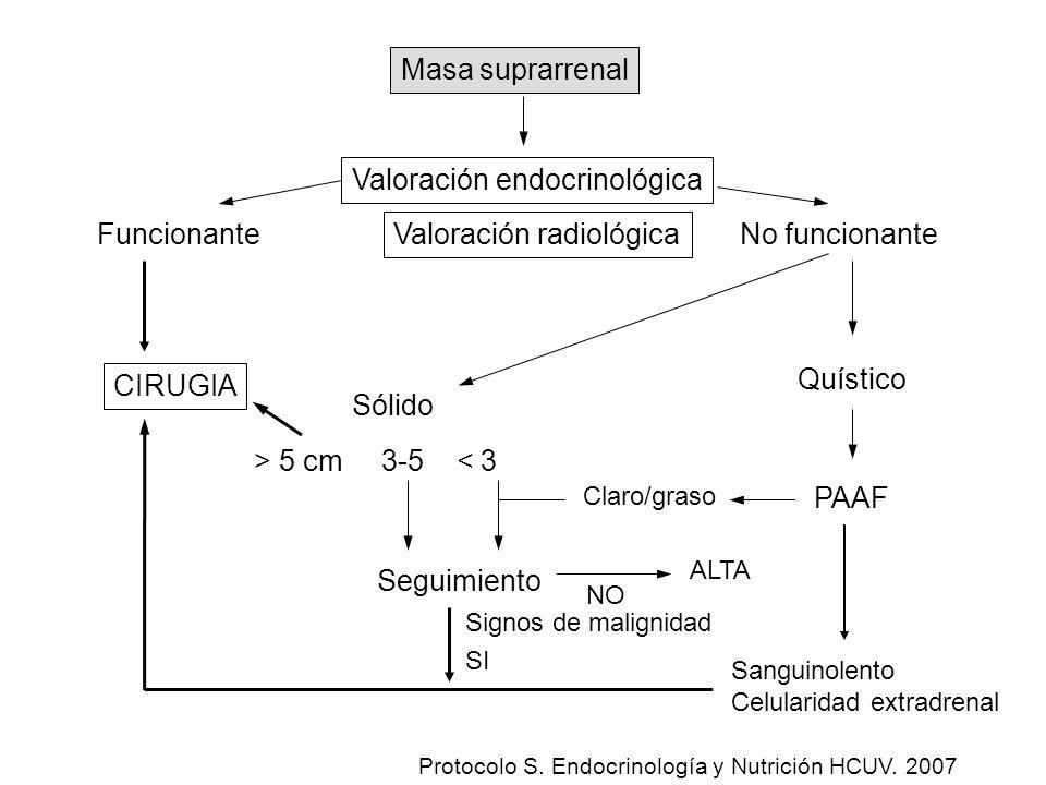 Valoración endocrinológica