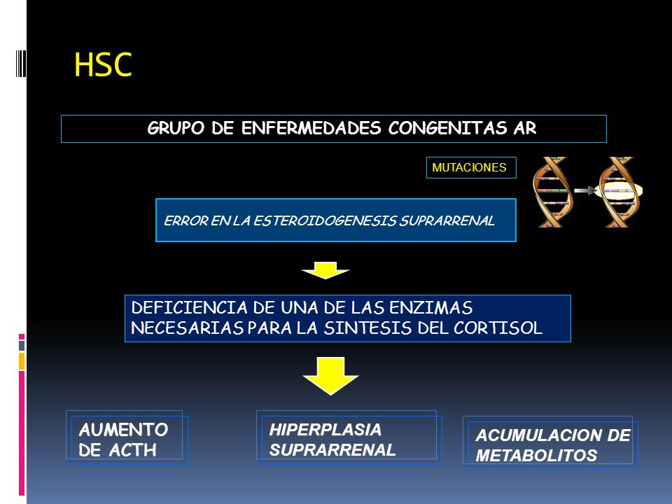 HSC GRUPO DE ENFERMEDADES CONGENITAS AR