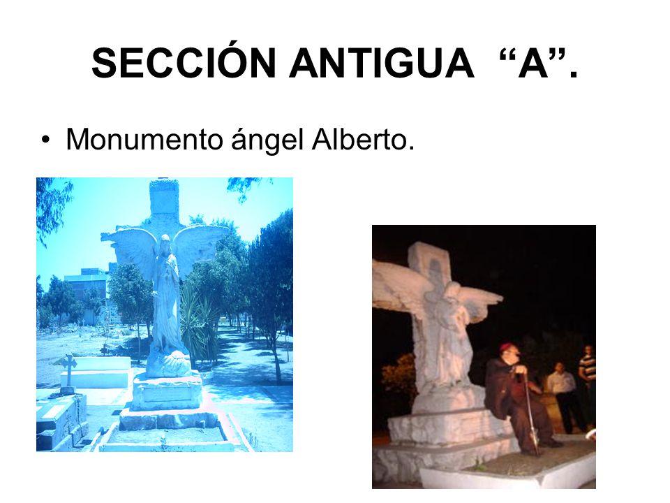 SECCIÓN ANTIGUA A . Monumento ángel Alberto.
