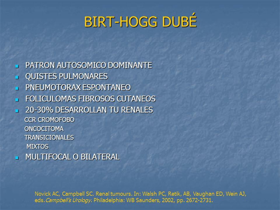 BIRT-HOGG DUBÉ PATRON AUTOSOMICO DOMINANTE QUISTES PULMONARES