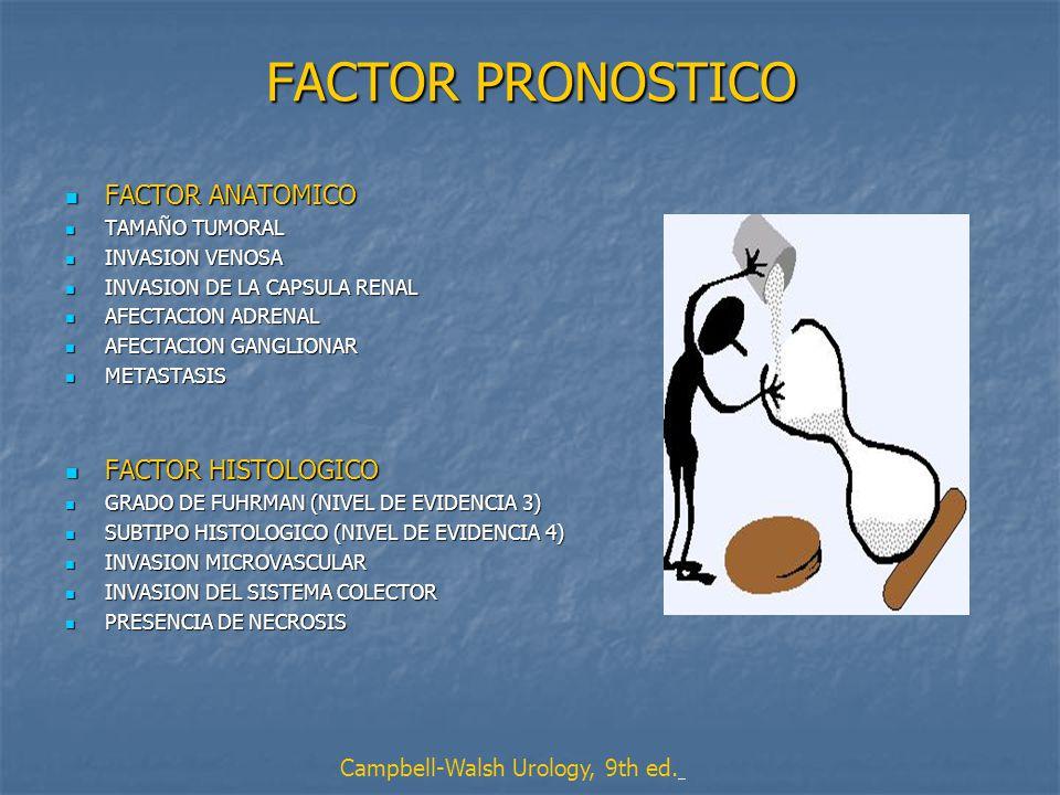 FACTOR PRONOSTICO FACTOR ANATOMICO FACTOR HISTOLOGICO