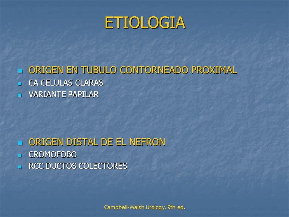 ETIOLOGIA ORIGEN EN TUBULO CONTORNEADO PROXIMAL