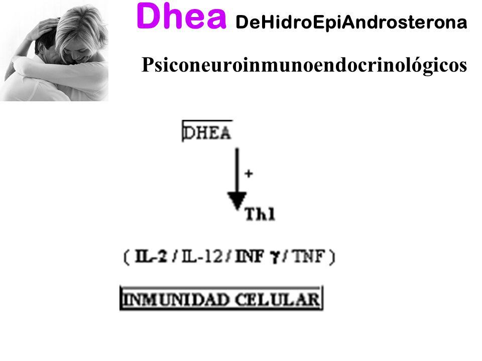 Dhea DeHidroEpiAndrosterona Psiconeuroinmunoendocrinológicos
