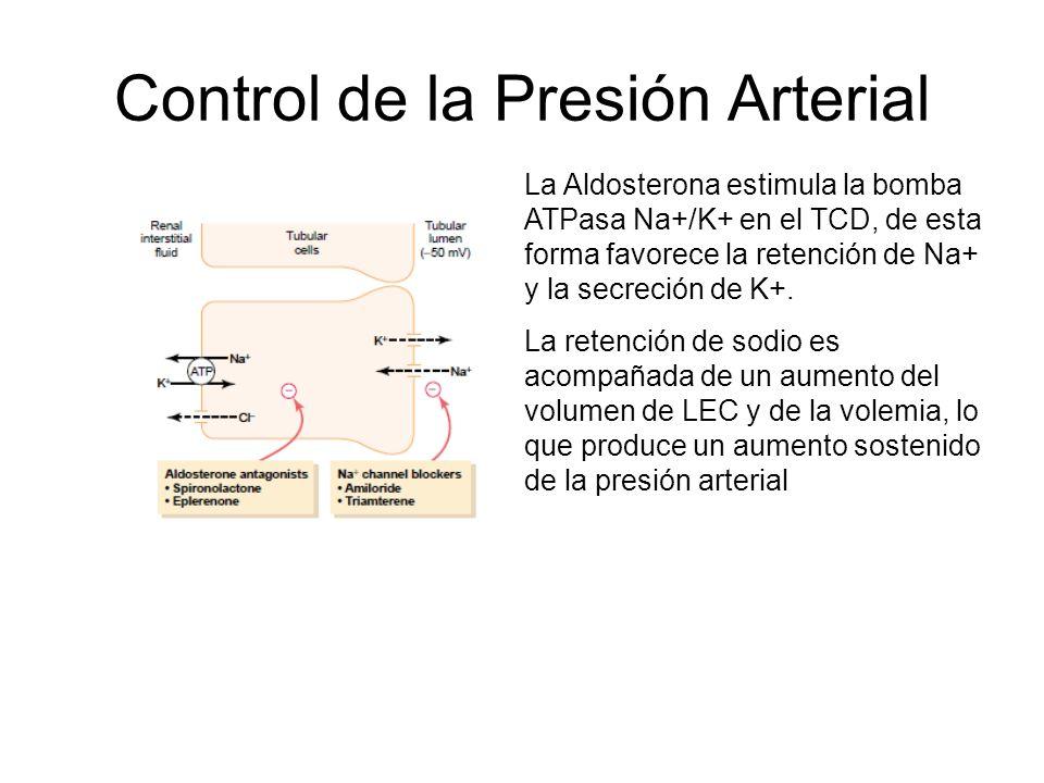 Control de la Presión Arterial