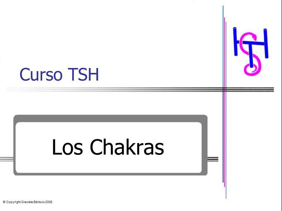 Curso TSH Los Chakras © Copyright Graciela Bárbulo 2005