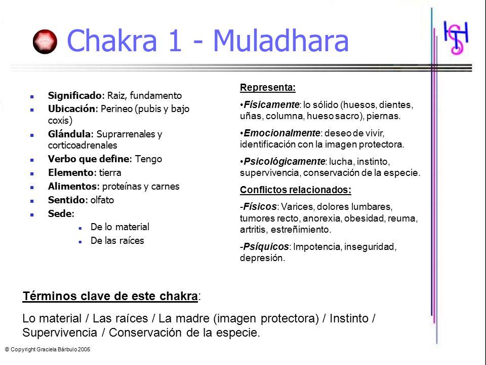 Chakra 1 - Muladhara Términos clave de este chakra: