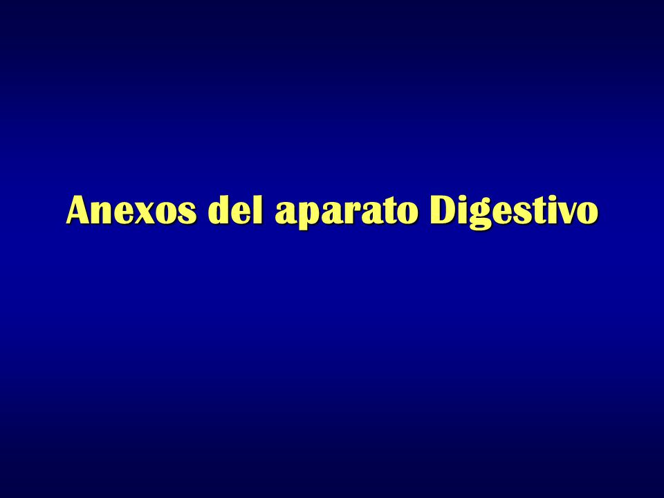 Anexos del aparato Digestivo
