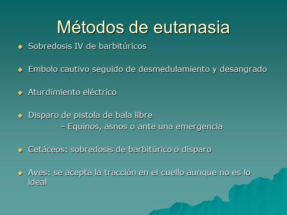 Métodos de eutanasia Sobredosis IV de barbitúricos