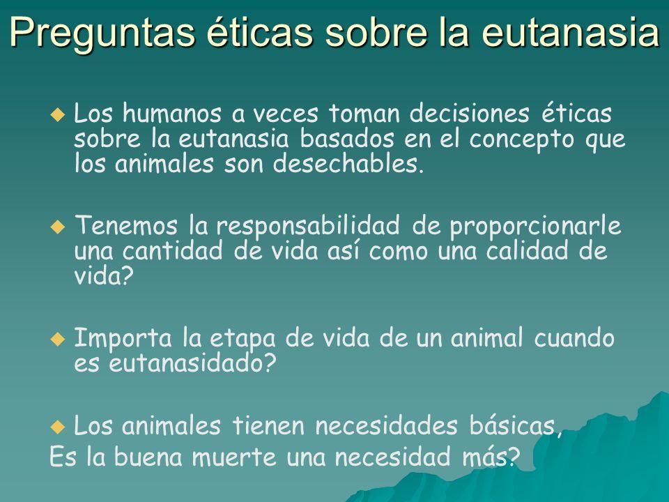 Preguntas éticas sobre la eutanasia