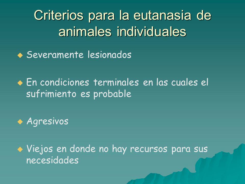 Criterios para la eutanasia de animales individuales
