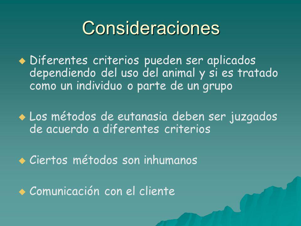 Consideraciones Diferentes criterios pueden ser aplicados dependiendo del uso del animal y si es tratado como un individuo o parte de un grupo.