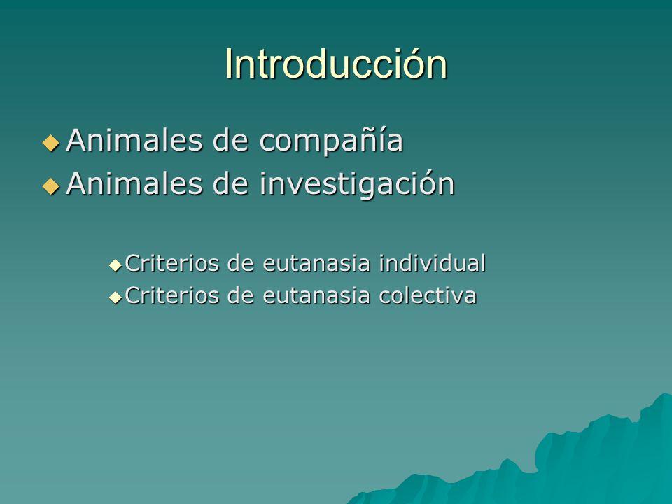 Introducción Animales de compañía Animales de investigación