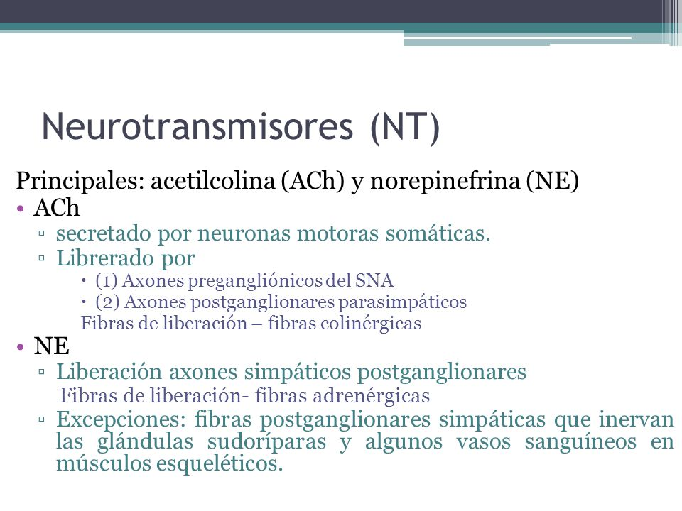 Neurotransmisores (NT)
