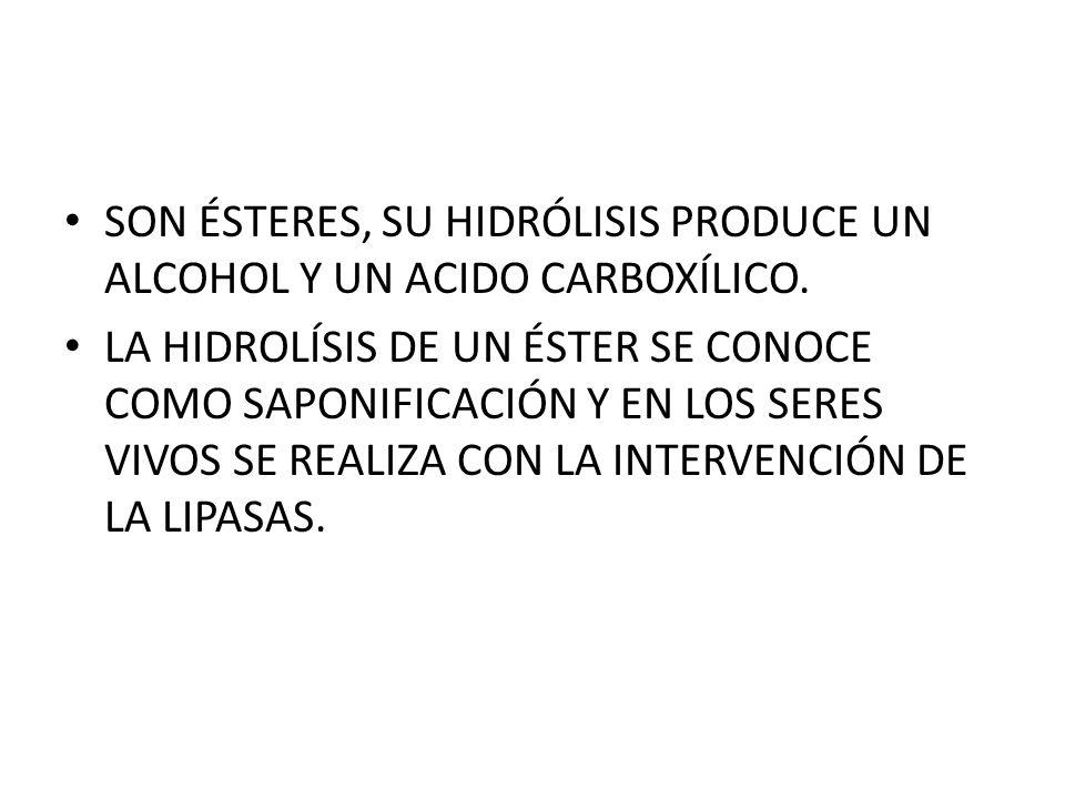 SON ÉSTERES, SU HIDRÓLISIS PRODUCE UN ALCOHOL Y UN ACIDO CARBOXÍLICO.