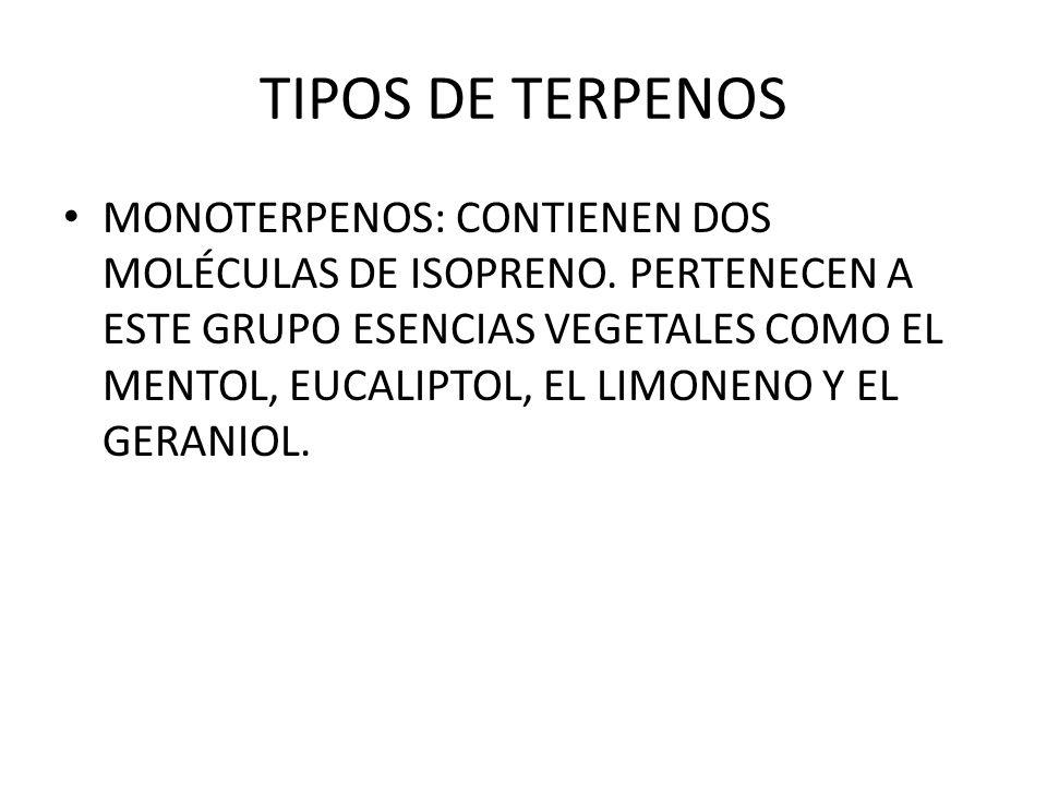 TIPOS DE TERPENOS