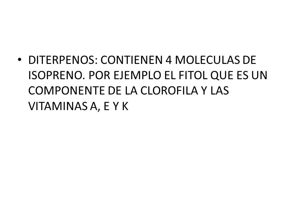DITERPENOS: CONTIENEN 4 MOLECULAS DE ISOPRENO