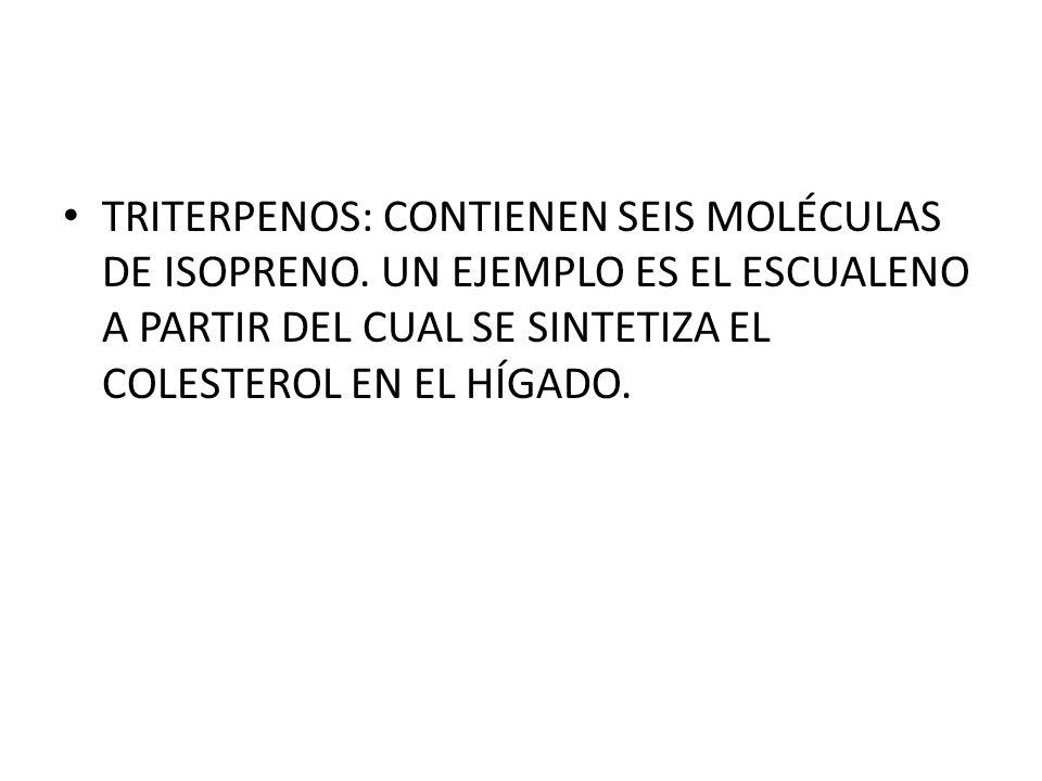 TRITERPENOS: CONTIENEN SEIS MOLÉCULAS DE ISOPRENO