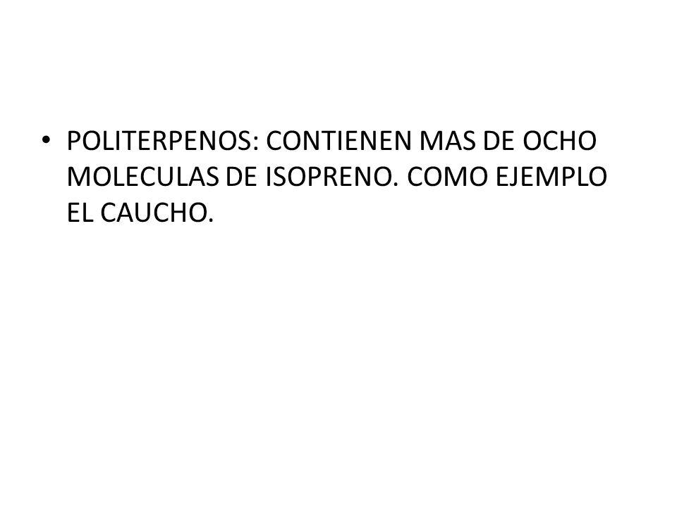 POLITERPENOS: CONTIENEN MAS DE OCHO MOLECULAS DE ISOPRENO