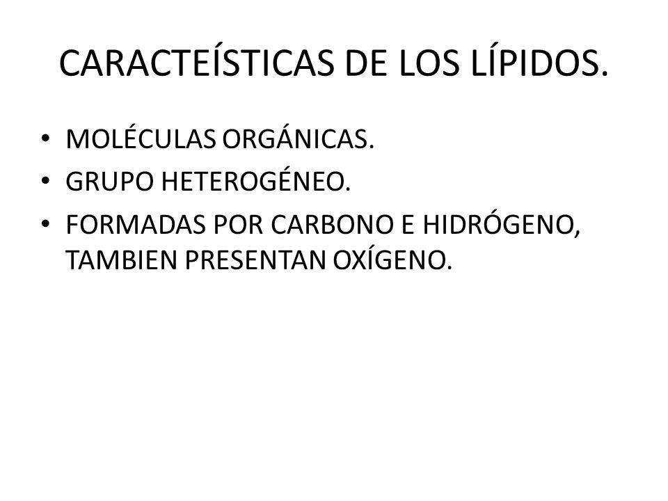 CARACTEÍSTICAS DE LOS LÍPIDOS.