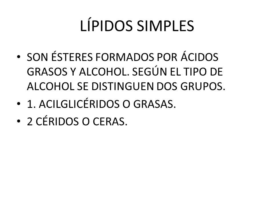 LÍPIDOS SIMPLES SON ÉSTERES FORMADOS POR ÁCIDOS GRASOS Y ALCOHOL. SEGÚN EL TIPO DE ALCOHOL SE DISTINGUEN DOS GRUPOS.