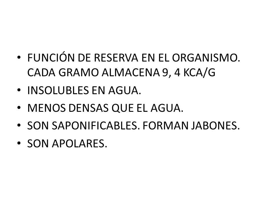 FUNCIÓN DE RESERVA EN EL ORGANISMO. CADA GRAMO ALMACENA 9, 4 KCA/G
