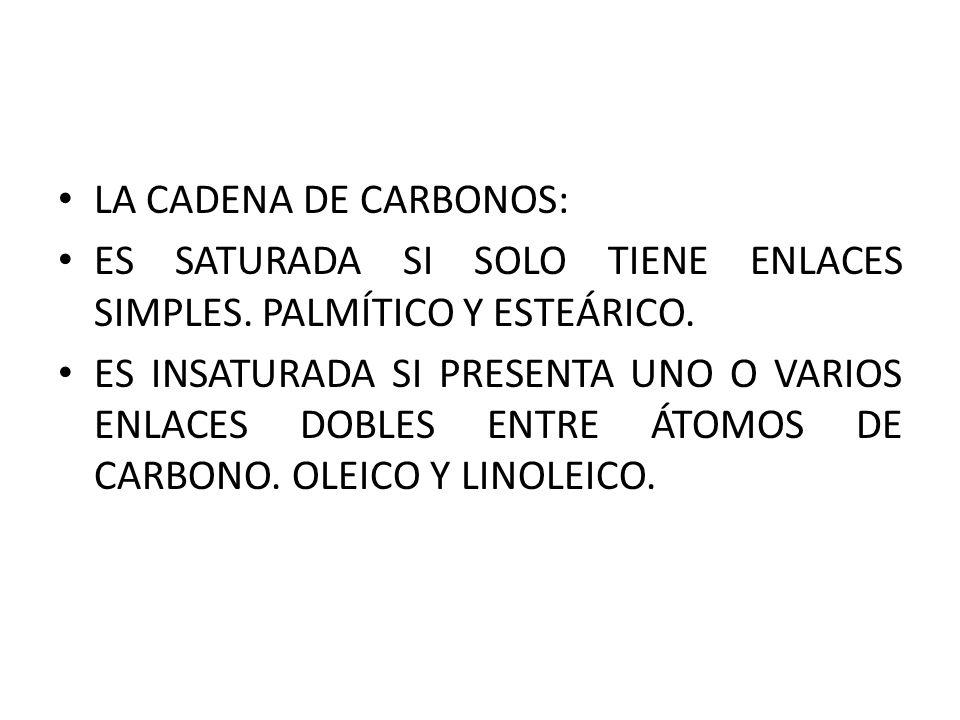 LA CADENA DE CARBONOS: ES SATURADA SI SOLO TIENE ENLACES SIMPLES. PALMÍTICO Y ESTEÁRICO.