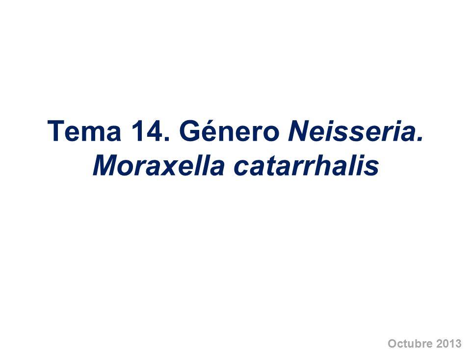 Tema 14. Género Neisseria. Moraxella catarrhalis