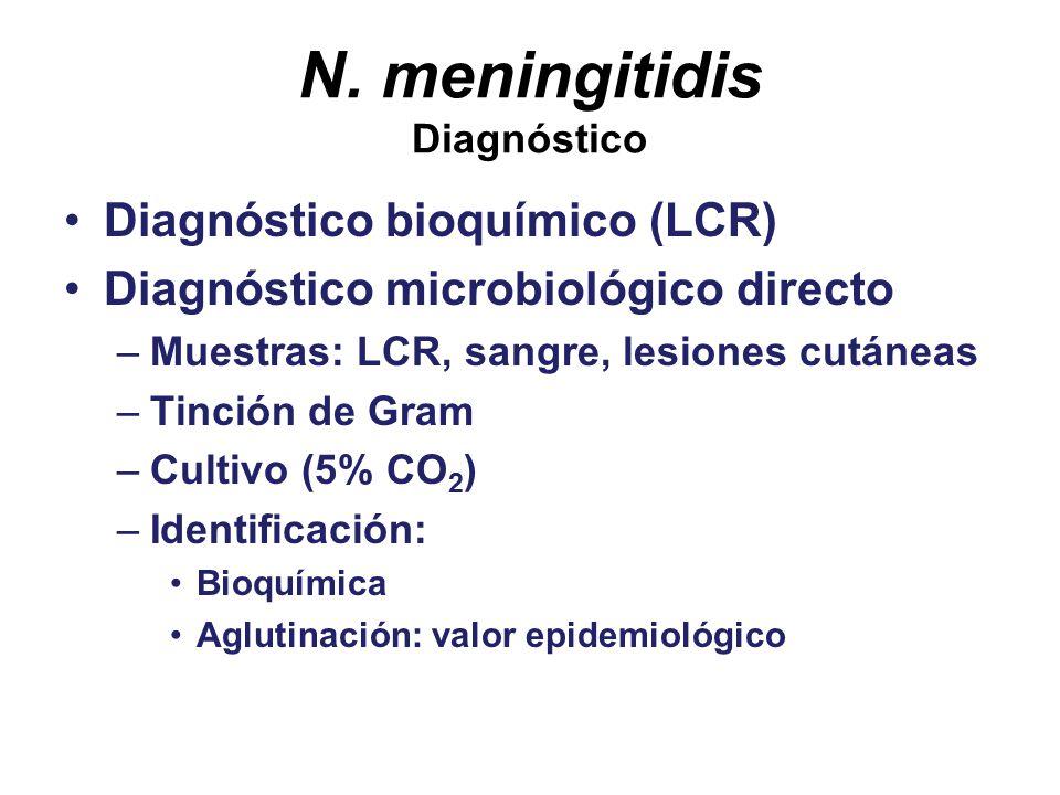 N. meningitidis Diagnóstico