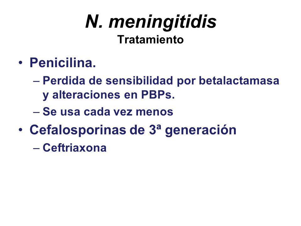 N. meningitidis Tratamiento