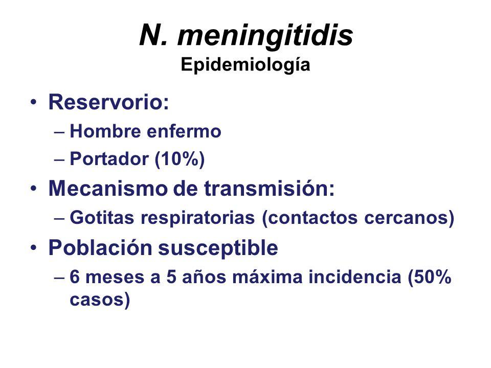 N. meningitidis Epidemiología