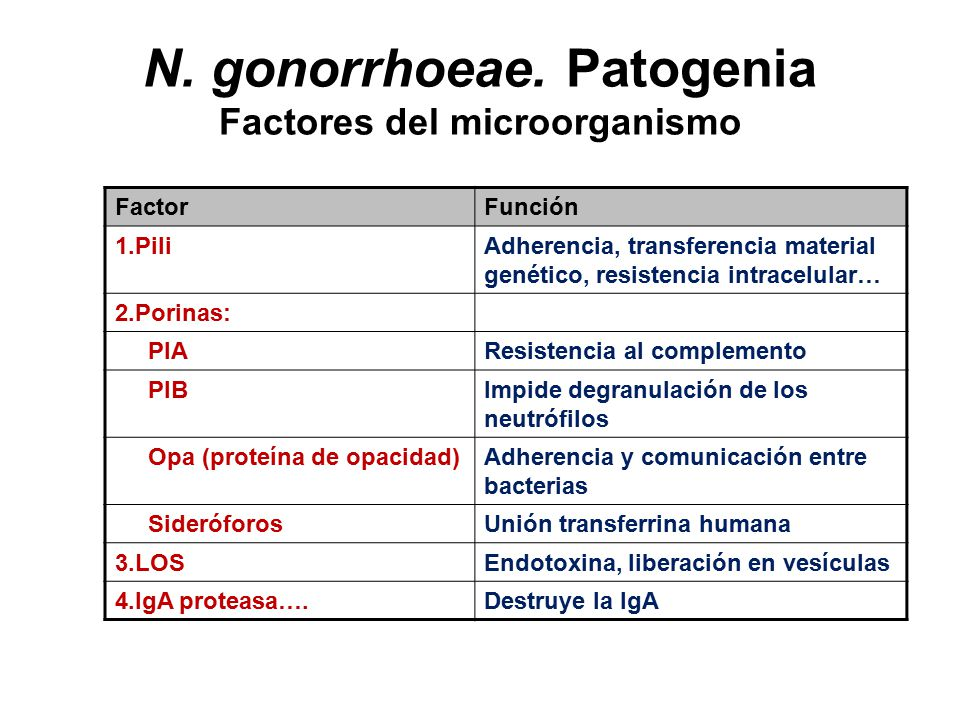 N. gonorrhoeae. Patogenia Factores del microorganismo