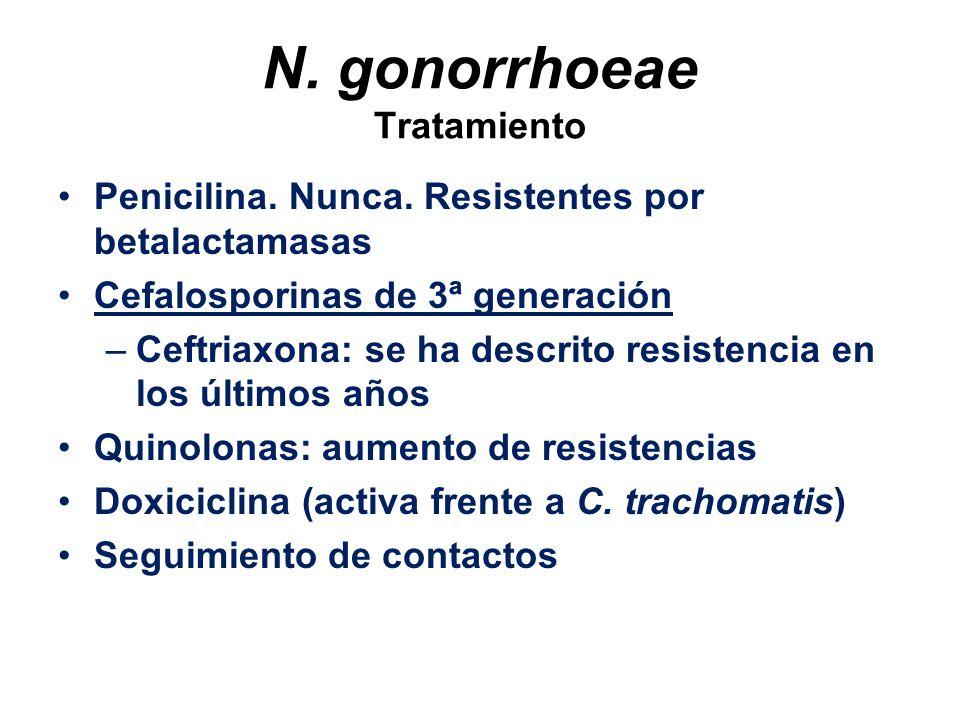 N. gonorrhoeae Tratamiento
