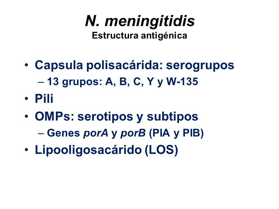 N. meningitidis Estructura antigénica