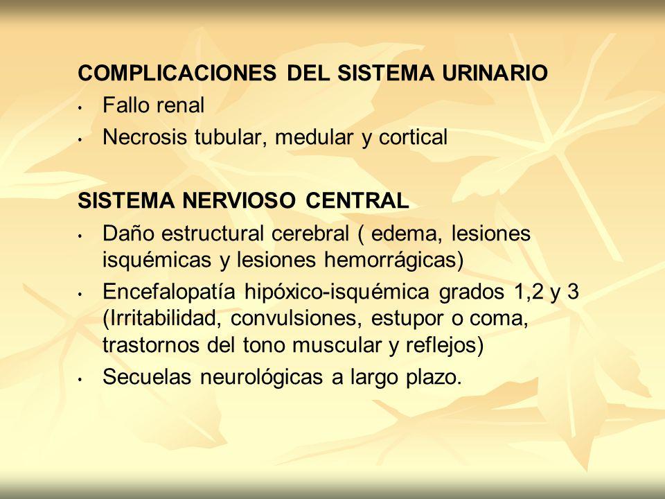 COMPLICACIONES DEL SISTEMA URINARIO