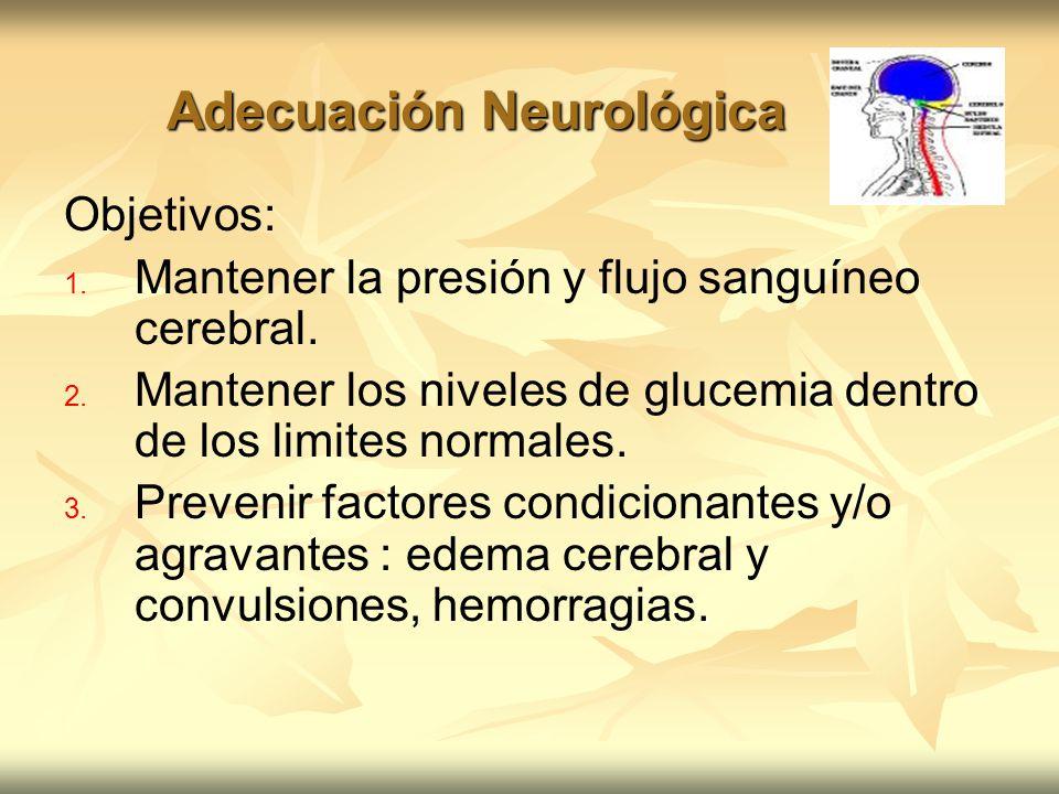 Adecuación Neurológica