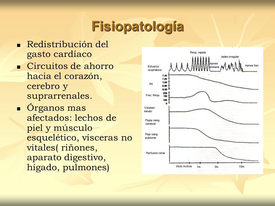 Fisiopatología Redistribución del gasto cardíaco