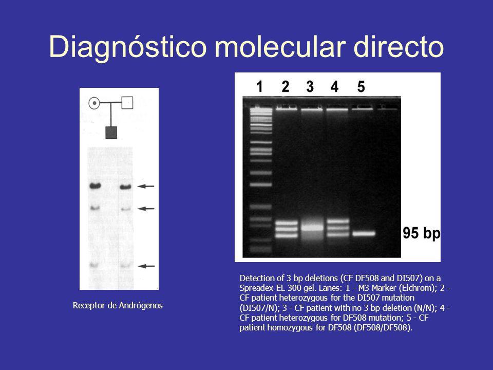 Diagnóstico molecular directo