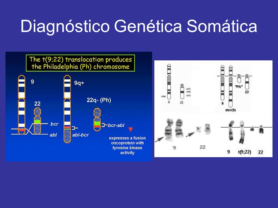 Diagnóstico Genética Somática